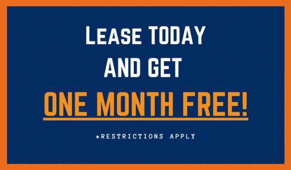 Currently Offering 1 Month Free on All Apartments!